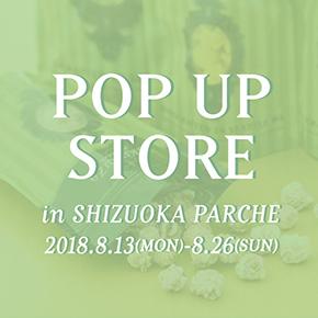 290-290 SHIZUOKA-PARCHE